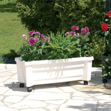 "Planter box ""Calypso with watering system and wheels"